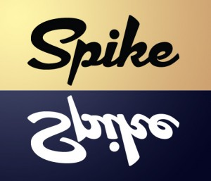 spike bipolar 300x257 - Designers + Developers: From Duel to Duo