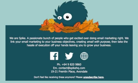 spike footer 470x282 - Email Marketing